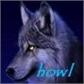 Usuário: howl