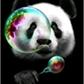 Usuário: PandaMontana