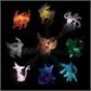 Usuário: Rainbow-lutions