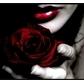 Usuário: ~_Girl_Vampire_