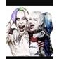 Usuário: ~_Harley-Quinn