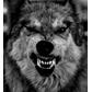 ~WolfsMe_