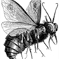 Usuário: lordoftheflies