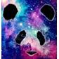Usuário: ~Pandaespacial99