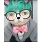 Usuário: ~ParkYoshi
