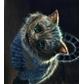 Usuário: ~An_Cat_cheshire