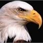 Usuário: EaglePrincess