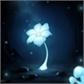 Usuário: ~Echo_Flower