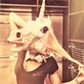 ~Unicorn_Killer