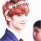 Usuário: YeonBom