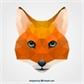 Usuário: FoxGuy